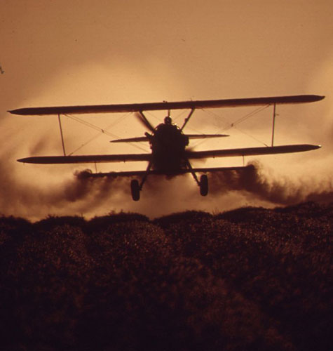 CROP DUSTING NEAR CALIPATRIA IN THE IMPERIAL VALLEY